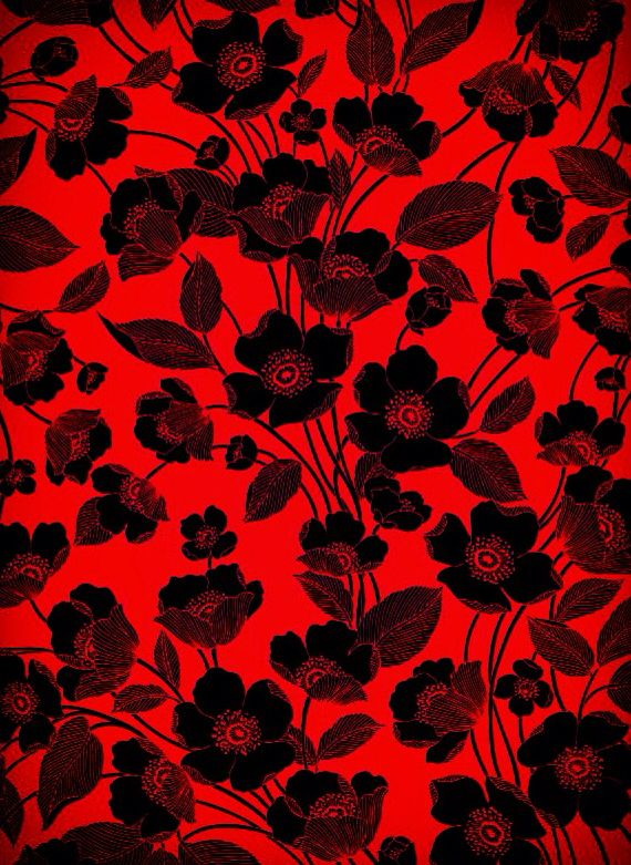 Black And Red Flowers Red And Black Background Red Background Red Flower Wallpaper