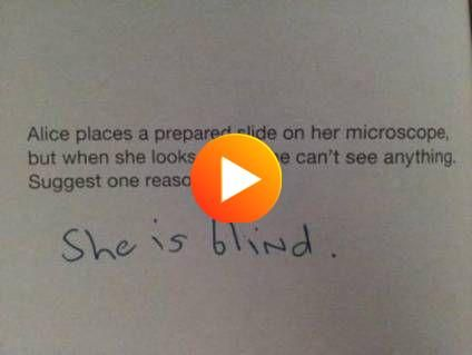 Best Funny Test Answers Student Teachers 68+ Ideas