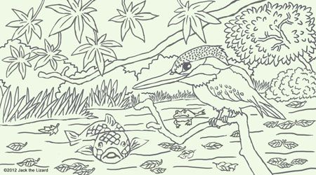 Nice Colouring Pages Of River Kingfisher   Free   {BEAUTIFUL COLOURING PAGES}