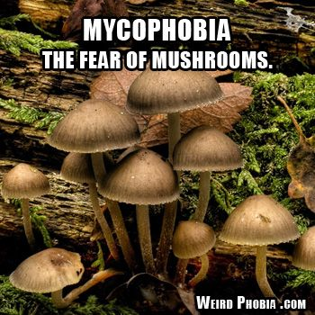 Mycophobia