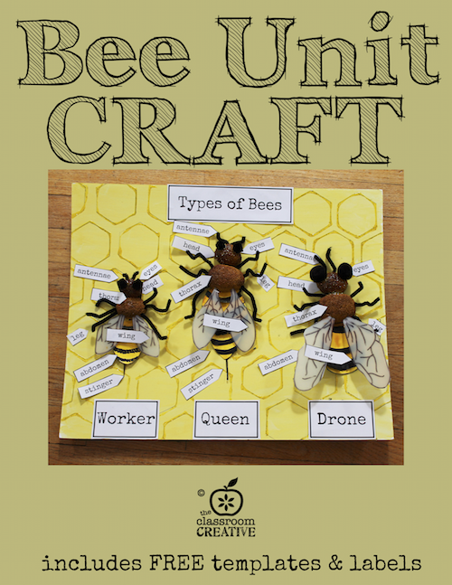 Bee Unit Craft And Activity Includes Free Templates And Labels