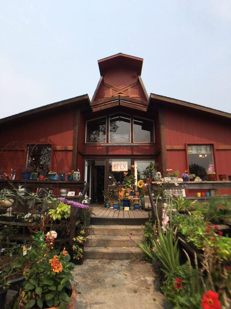 Weekend Trip My Ultimate Mendocino County Travel Guide
