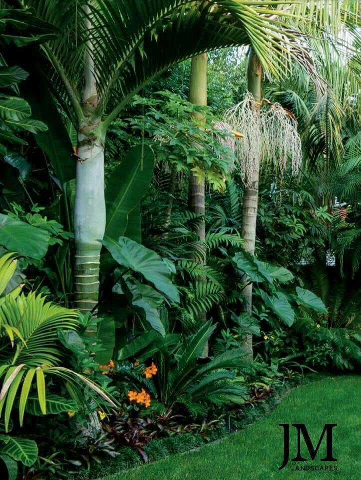 New Zealand Subtropical Gardens Google Search Tropical Backyard Landscaping Tropical Garden Design Tropical Landscaping