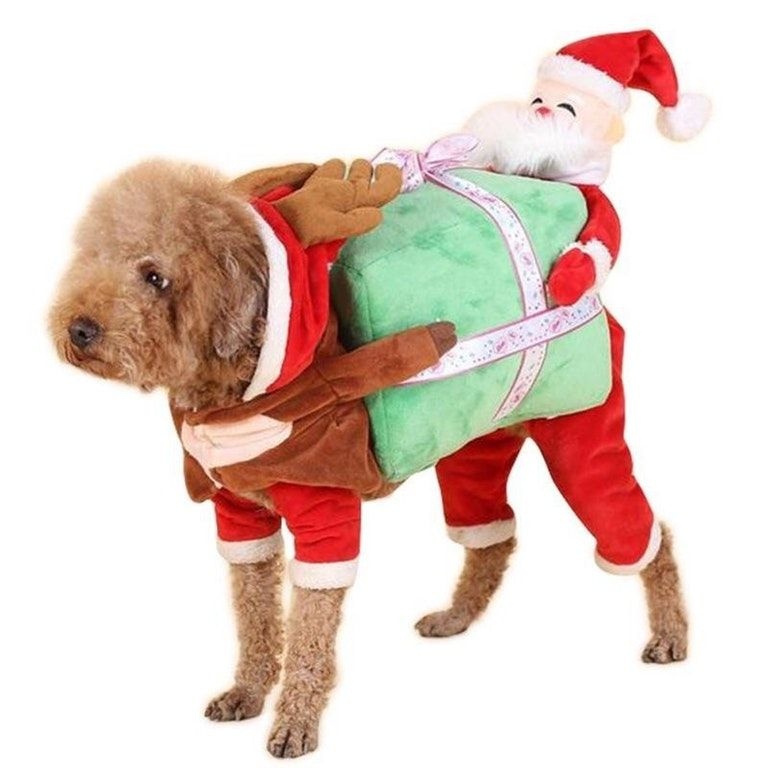 This Is A Real Dog Costume I Found On Amazon Called Dog Carrying