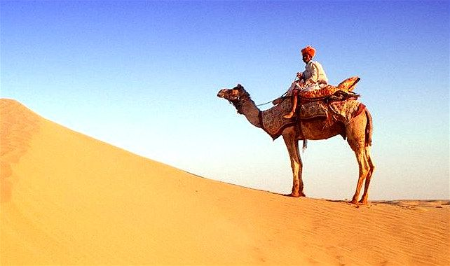 Ride a camel across the desert