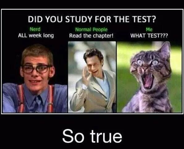 Funny Exam Memes Tumblr : Did you study for the test