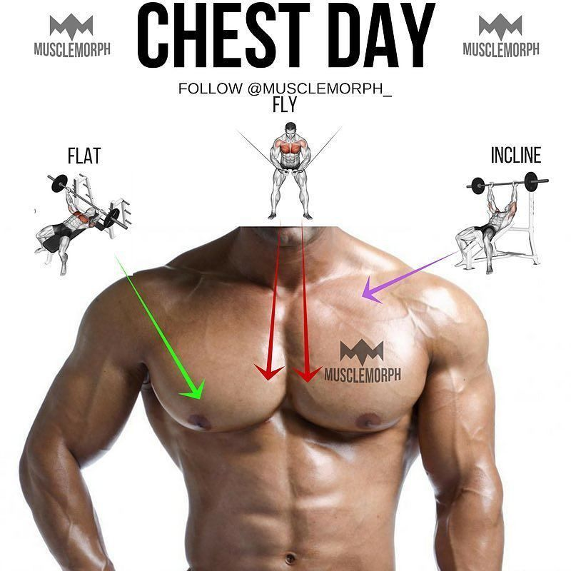 pin by wendy lefler on chest pinterest workout chest workouts