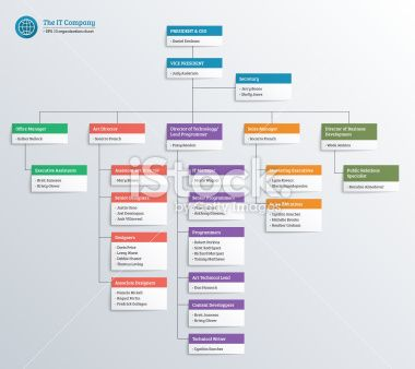 IT company organization chart Royalty Free Stock Vector Art - company organization chart