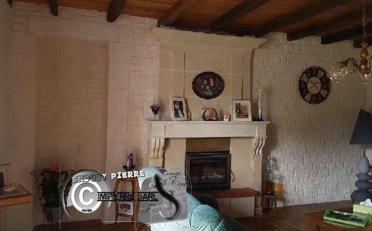 Lu0027enduit de chaux pigmenté puis sculpté pour un aspect rustique ou - enduit pour mur interieur