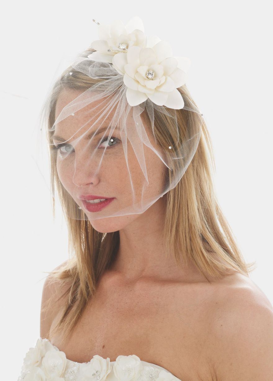 Chinlength birdcage veil wedding ideas pinterest veil