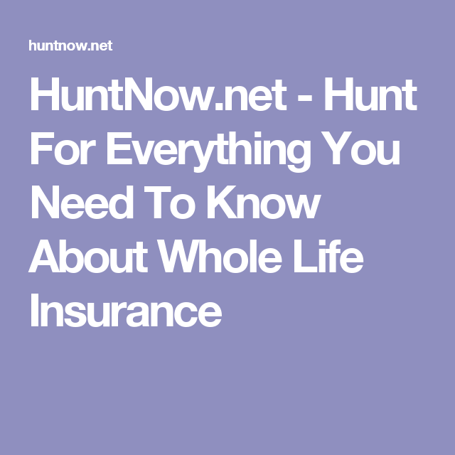 Hunt For Everything You Need To Know About