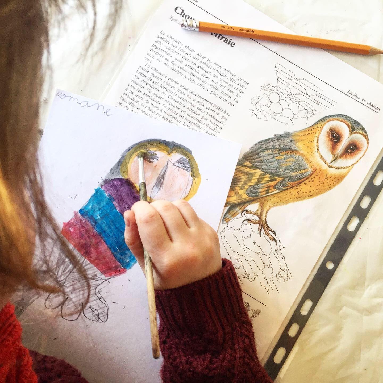 Dessine Moi Un Oiseau En 2020 Cours D Art Dessin Gouache
