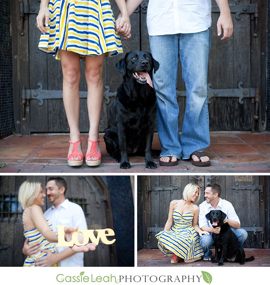 Dog Engagement Pictures Google Search Dogs And Feet Wedding