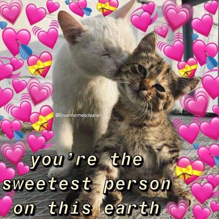 Pin by nacila on meme in 2020 Love you meme, Love you