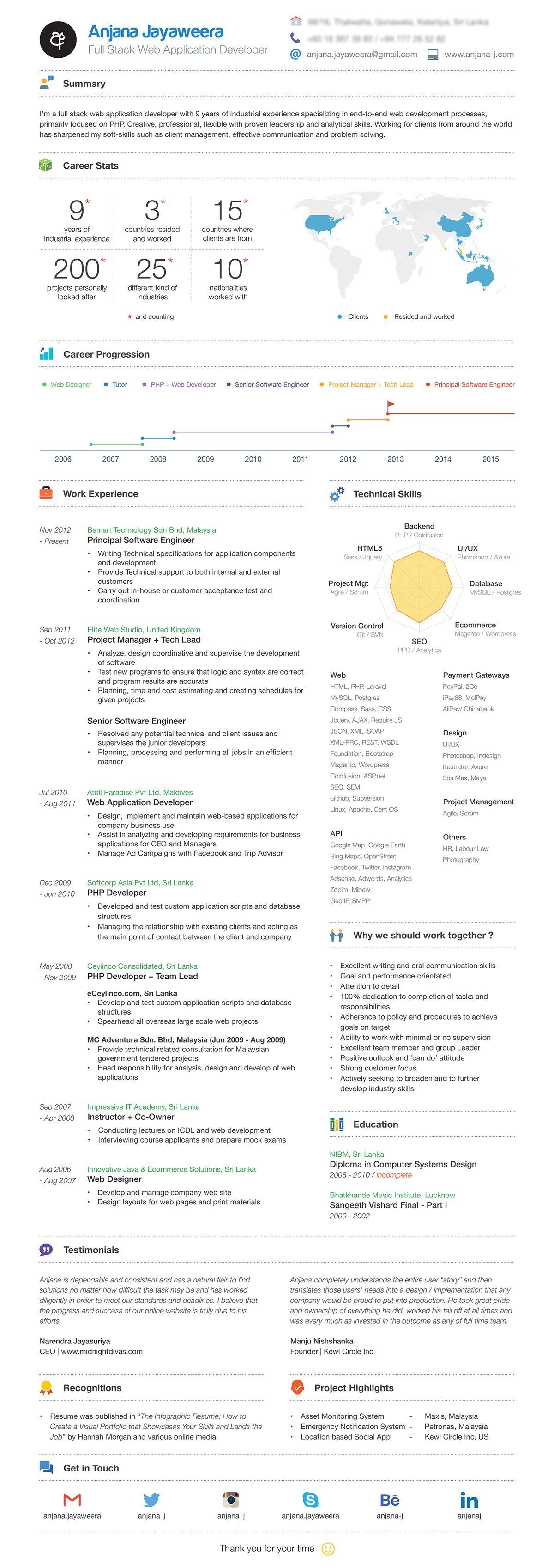 infographic resume  2016