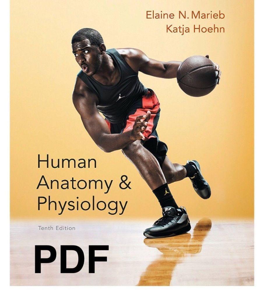 Human Anatomy and Physiology 10th Edition eb00к (PDF) | Healthy ...