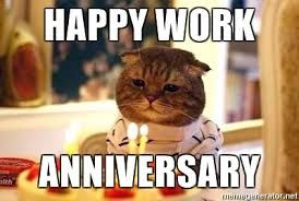 Happy work anniversary amanda congratulations meme on memegen