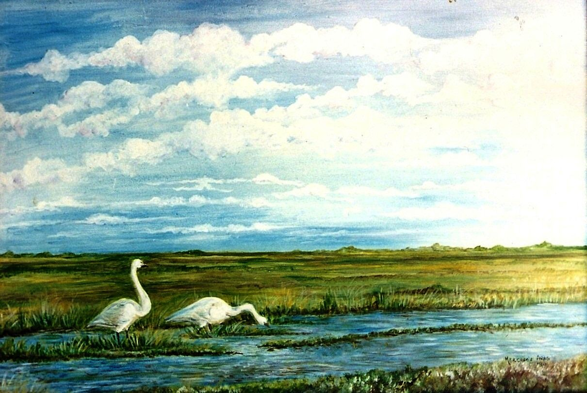 Lagunas de Pigüe Acrílico 65 x 45