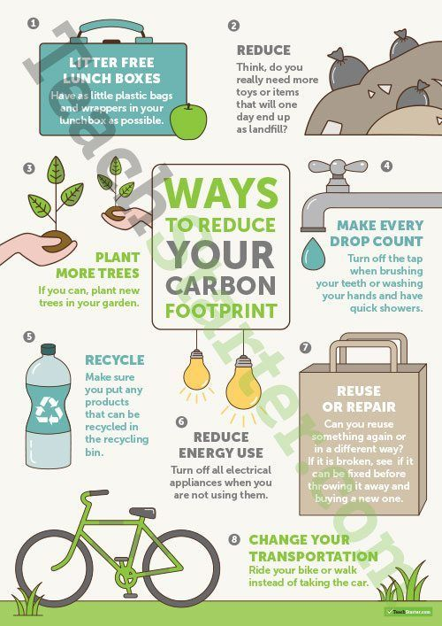 Ways to Reduce Your Carbon Footprint – Poster Teaching Resource ...