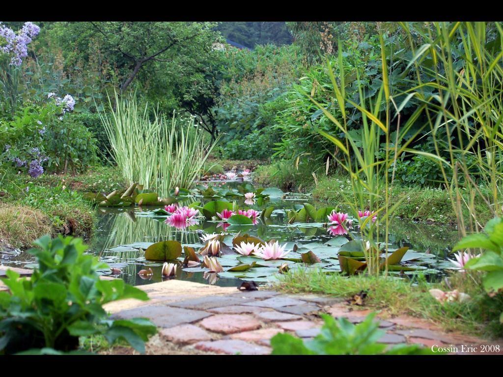 Jardin Andre Van Beek France Jardins