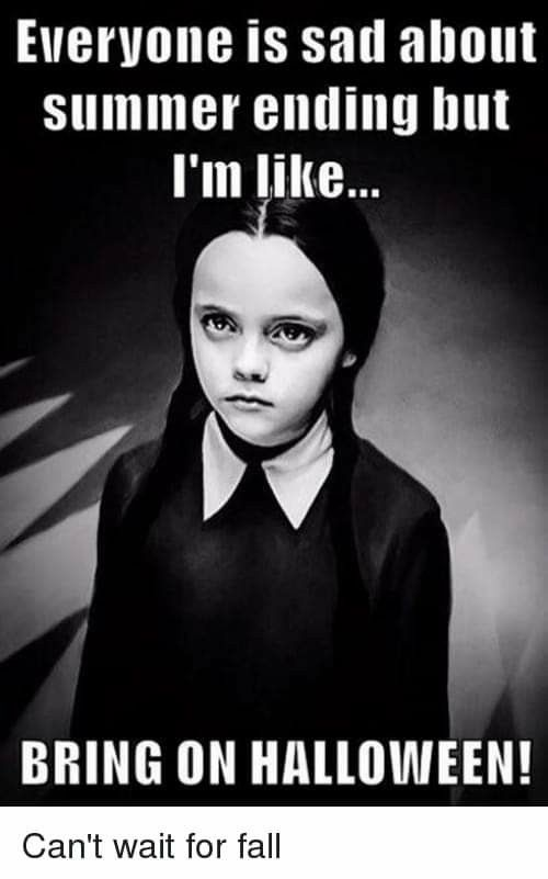Pin By Billie Jean On Fall Everything Halloween Memes Halloween Funny Spooky Halloween