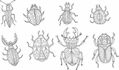 Advanced Insect Coloring Page Kidspressmagazine Com Insect Coloring Pages Bee Coloring Pages Coloring Pages