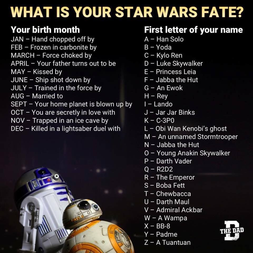 Secretly In Love With Rey Kisses By Boba Fett Say What Lmao Star Wars Quotes Star Wars Humor Star Wars Facts