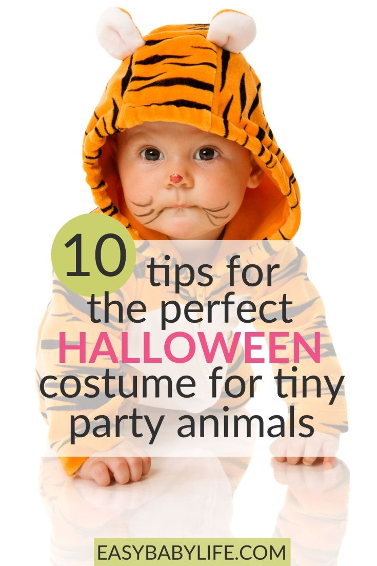 10 tips for the perfect halloween baby costume for tiny party