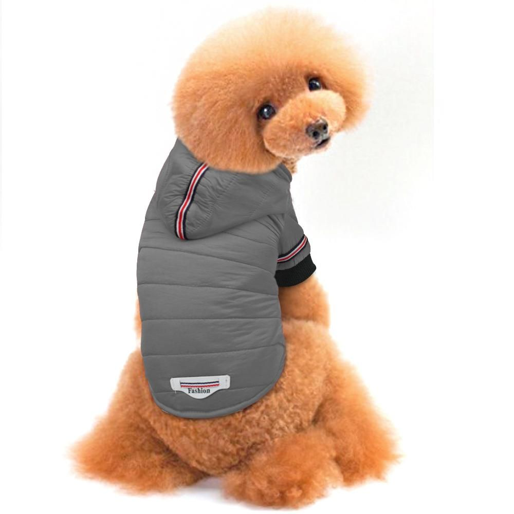 Dog Jacket Coat Chansdogbarn Com Dog Winter Clothes Dog