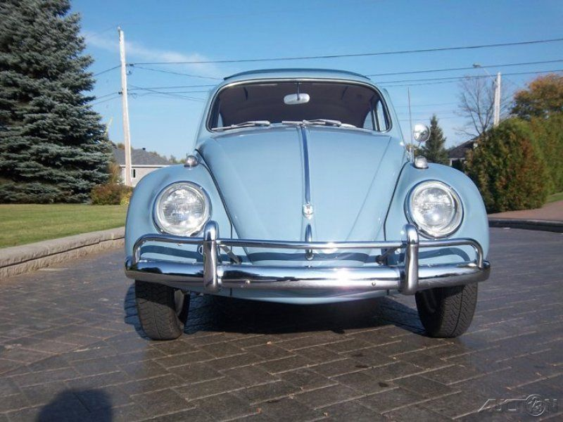Classic Cars: The Story of Volkswagen Beetles Classic Cars by ...