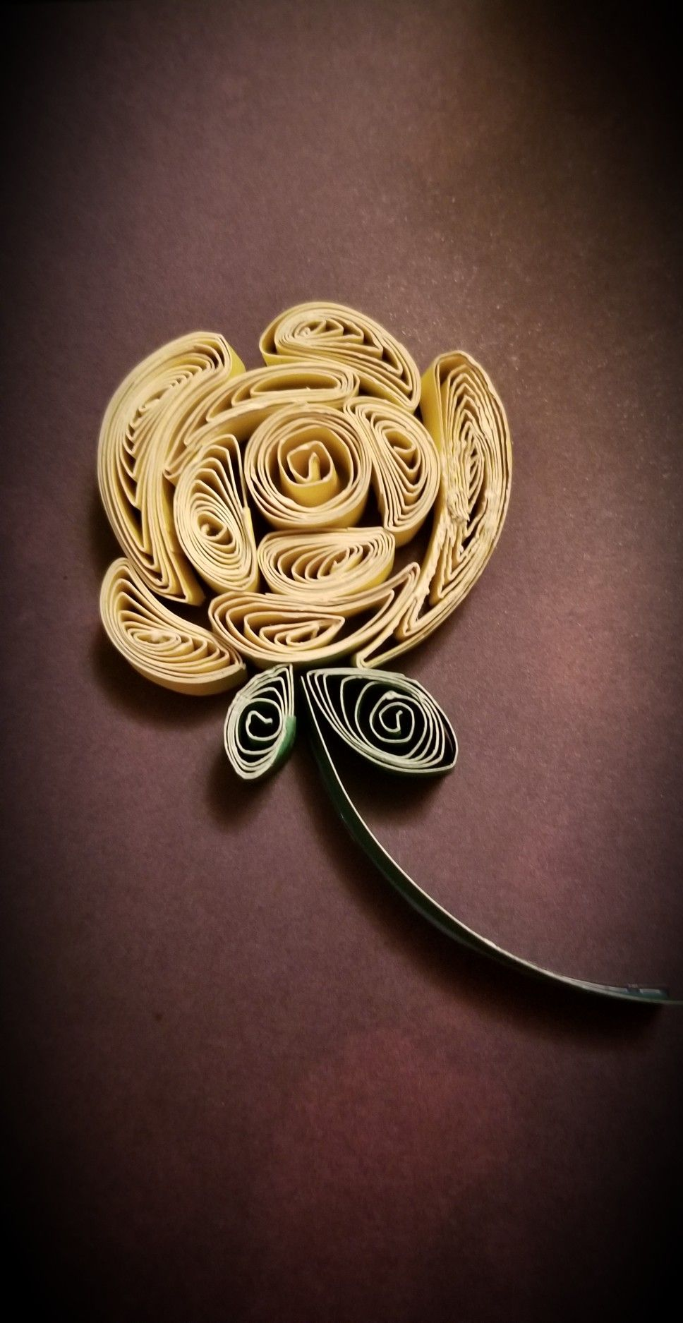 Looks Fairly Easy Paper Quilling Flowers Quilling Flowers