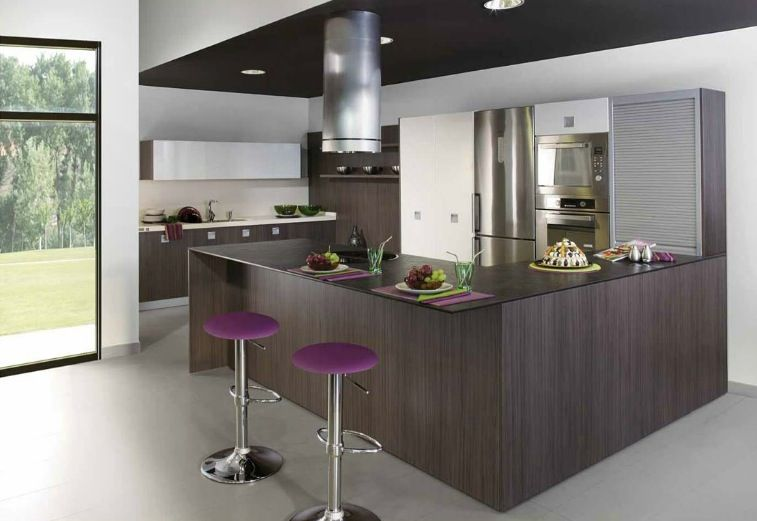 Kitchen Cabinets Ideas wenge kitchen cabinets : Kitchens Which Create the Section - Image 06 : Palatial Wenge ...