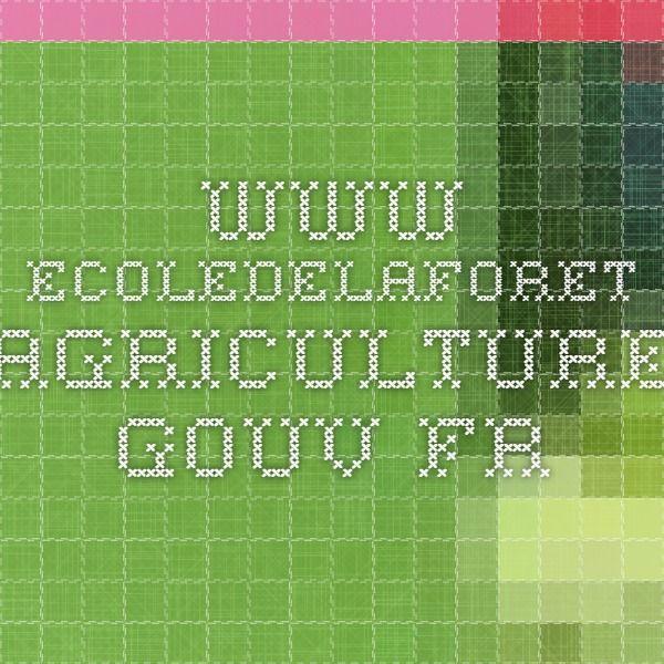 www.ecoledelaforet.agriculture.gouv.fr