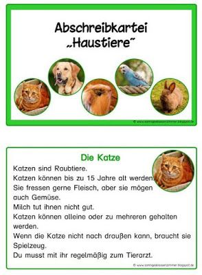 Lese Und Abschreibkartei Haustier In Druckschrift Schulhund Kartei Schulideen