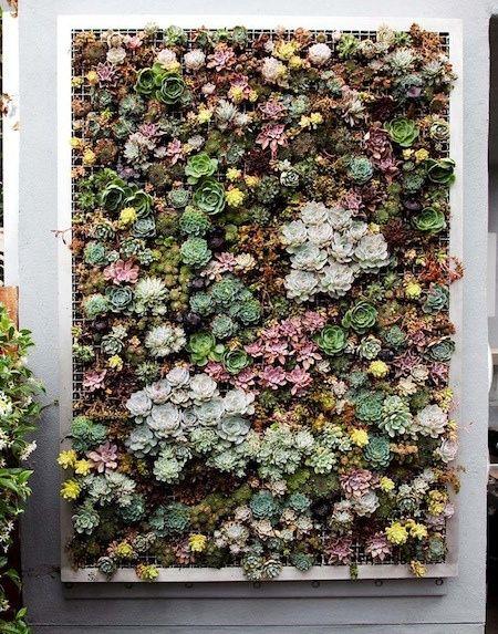 Charmant Plant A Vertical Succulent Garden By AphroChic, Via Flickr