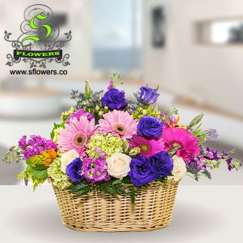 Florist, Flowers, Stella