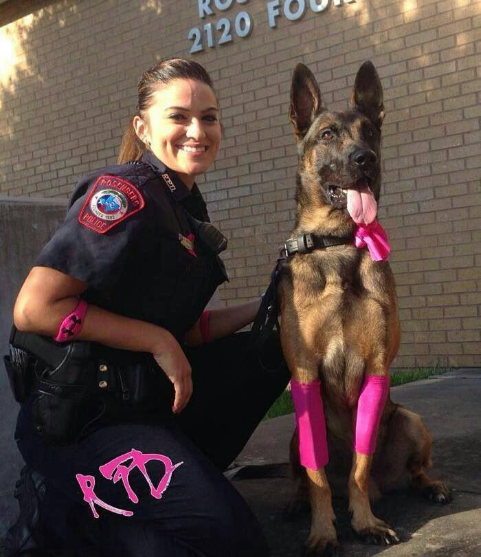 Police Military Dogs War Dogs Military Working Dogs