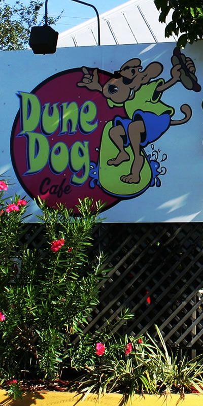 Dune Dog In Fabulous Jupiter Florida This Is A Jupiter Florida