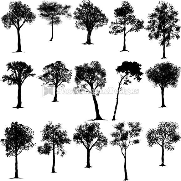 what would we have done without trees like these