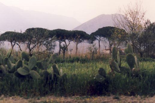 italienische Landschaft, Foto: S. Hopp