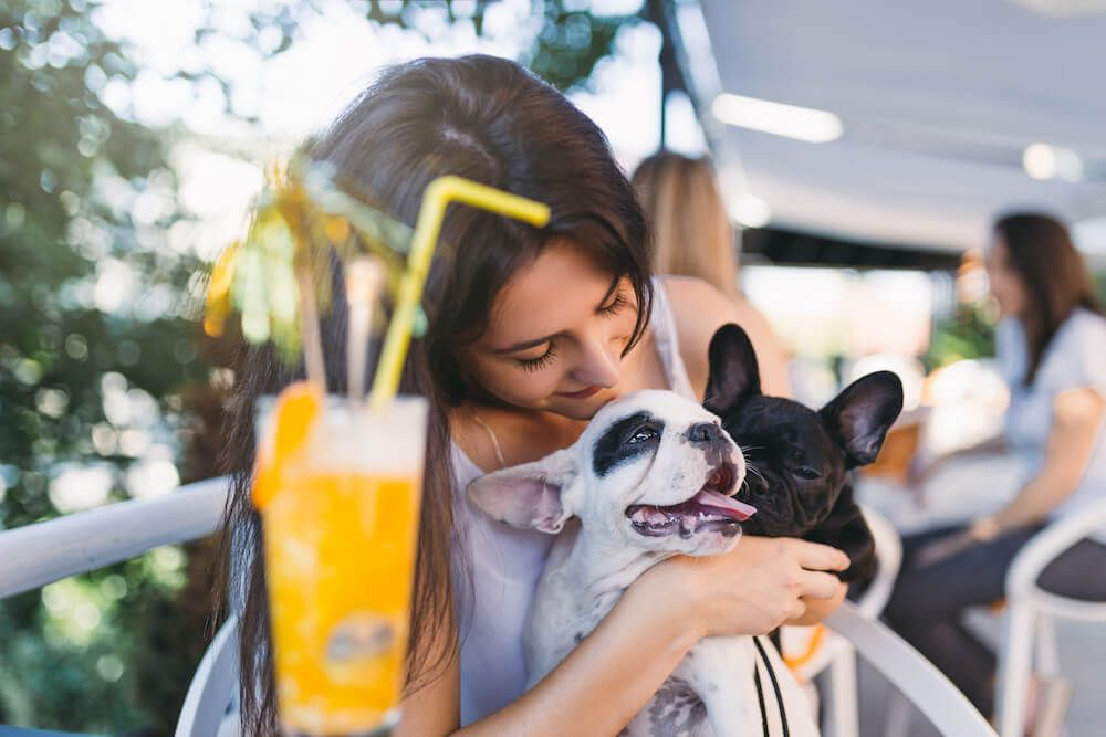 Best dogfriendly bars and wineries in perth pooky boo