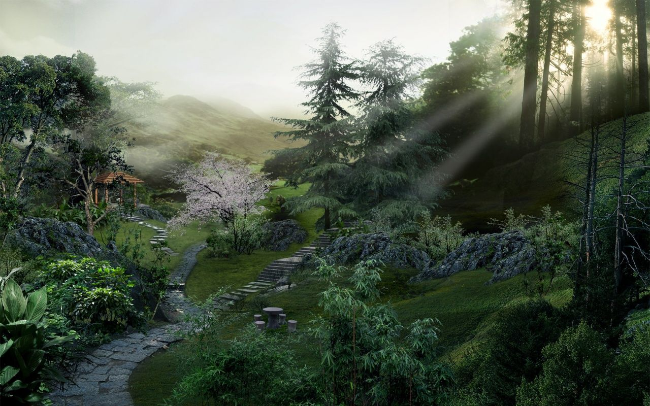 Chinese Forest Google Search Garden Setting With Images Chinese Landscape Japan Landscape