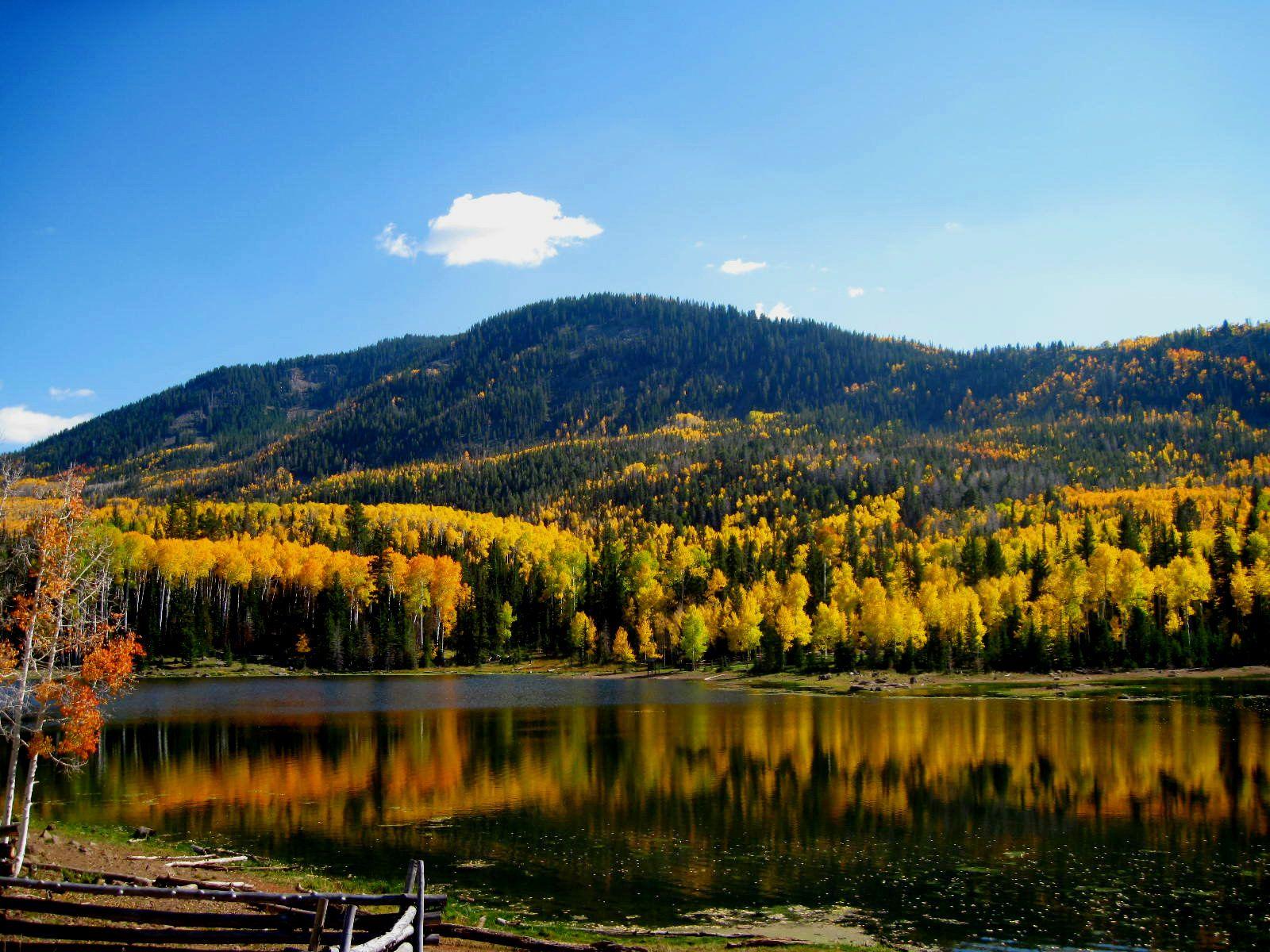 Beaver mountain, Utah | Where I Grew Up/Piute County/Southern Utah ...