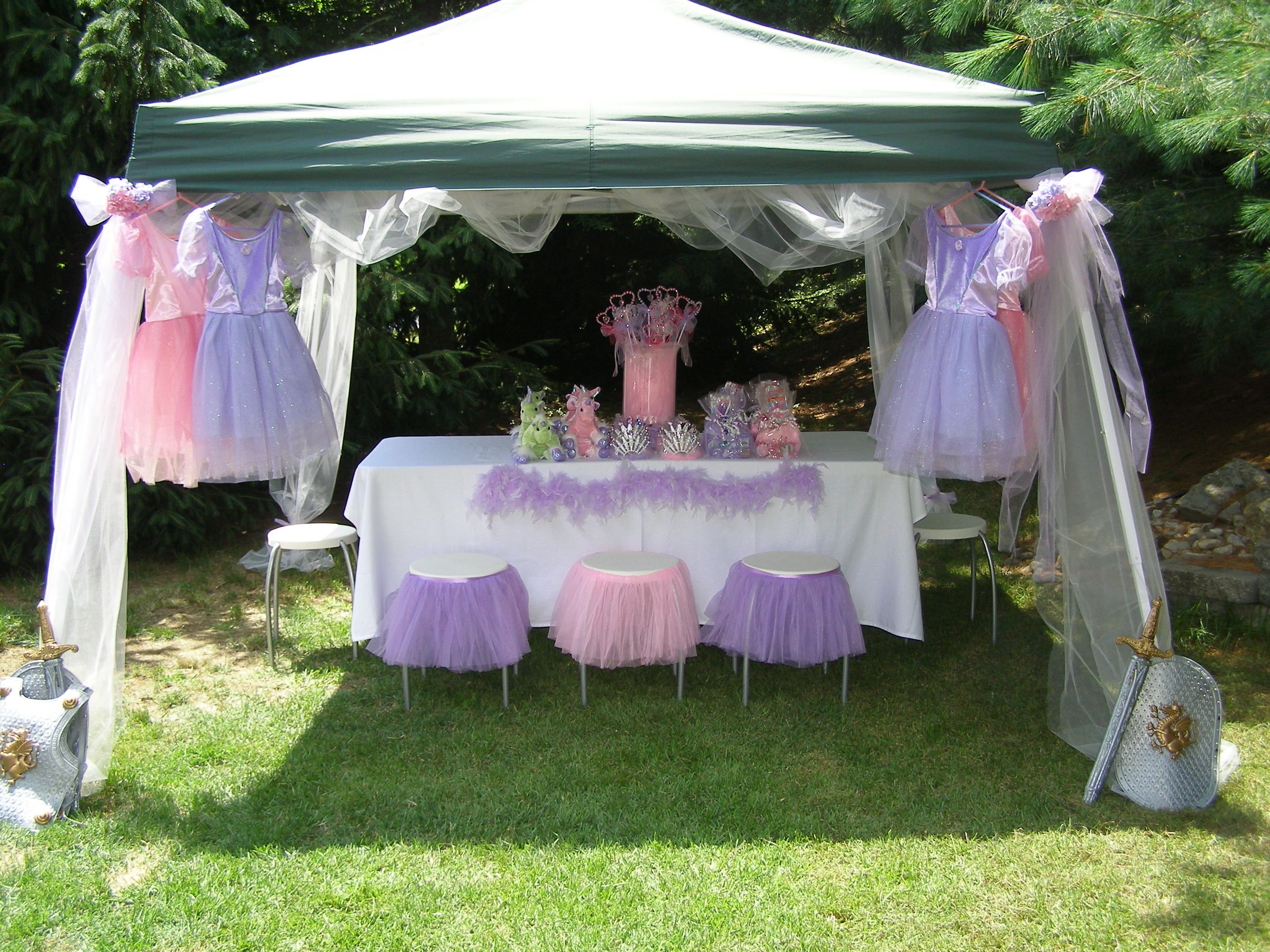 Ez Up Gazebos Can Be Used So Easily For An Outdoor Princess Party Tulle Can Dress U Princess Theme Birthday Party Princess Party Supplies Princess Sofia Party