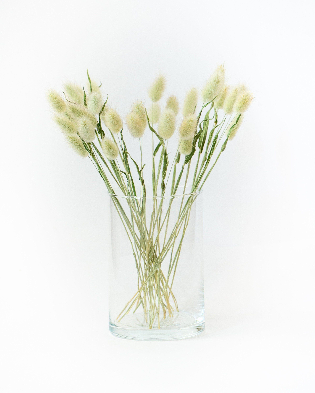 Naturalny Suszony Dmuszek Jajowaty Lagurus Grass Suszone Etsy Dried Flowers Flowers Grass
