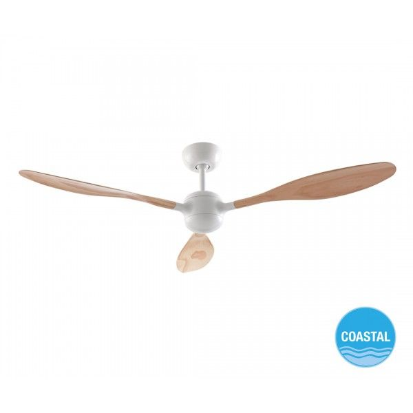 Woody 132cm Fan Only In White With Ash Blades Ceiling Fans Fans Also Available In A Larger Size Ceiling Fan Ceiling Fan With Light Lighting Ceiling Fans