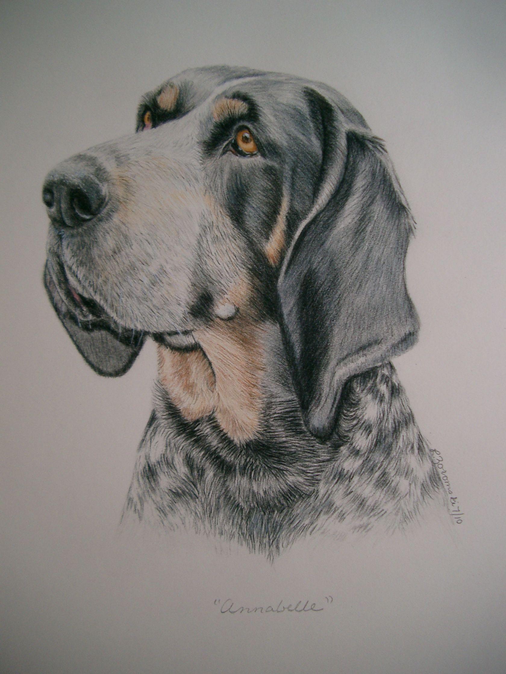 Lesley Zoromski Dog Portraits Simply Amazing Annabelle The