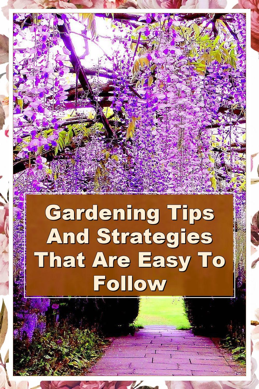 A Healthy Start How To Grow An Organic Garden In 2021 Organic Gardening Tips Gardening Tips Organic Gardening