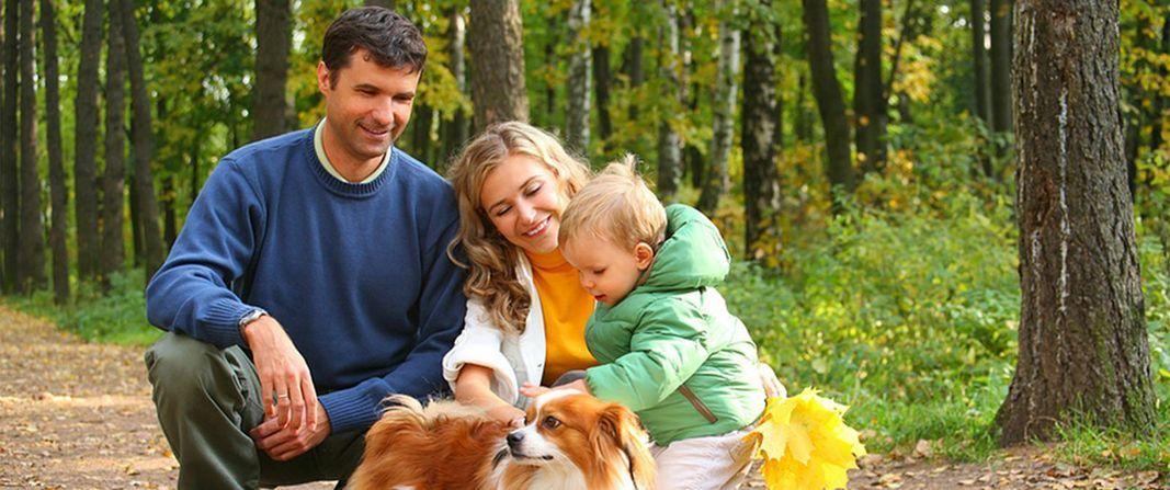 17++ Walnut grove animal clinic images