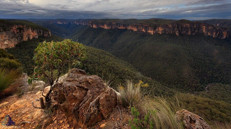 Grose Valley NSW
